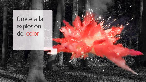 Únete a la explosión de color